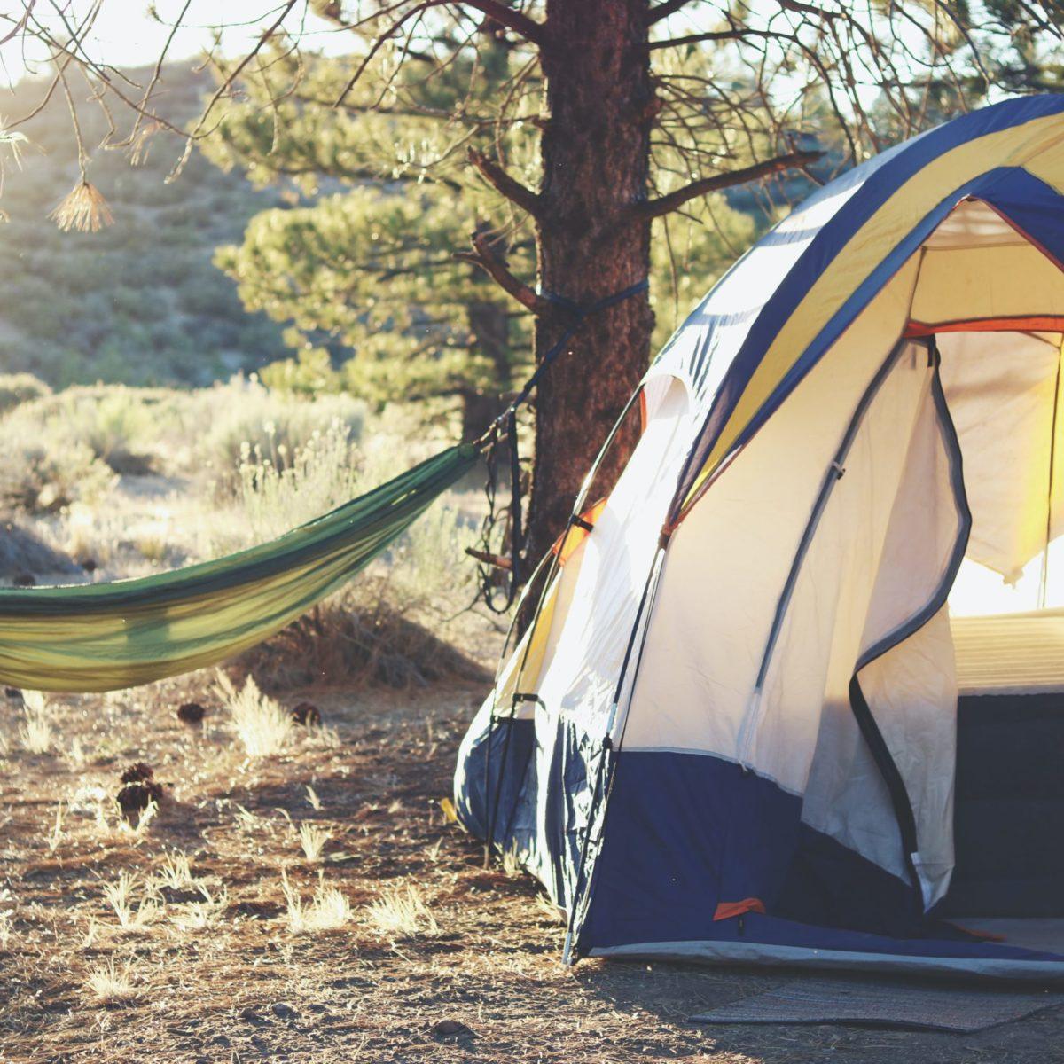 Zelt und Hängematte am Waldrand